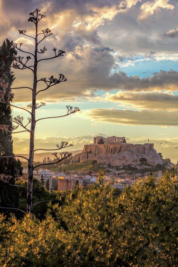 Templo do Partenon na acrópole contra o por do sol colorido em Atenas, Grécia imagem de stock royalty free