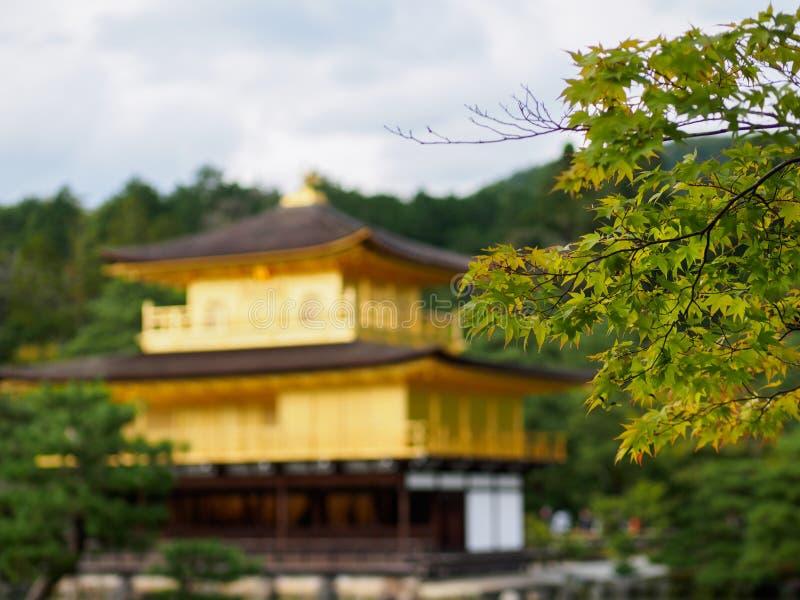 Templo dourado Kinkaku-ji em Kyoto fotos de stock