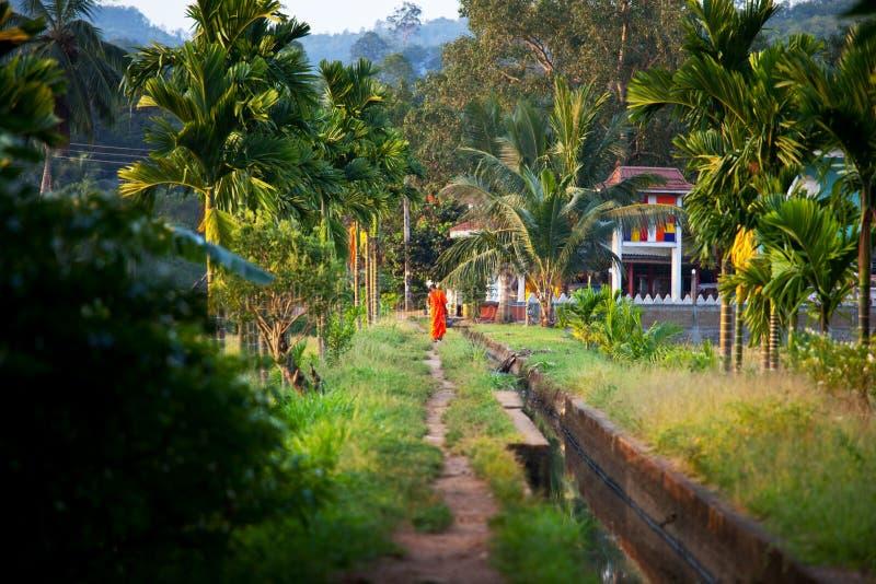 Templo em Sri Lanka fotografia de stock