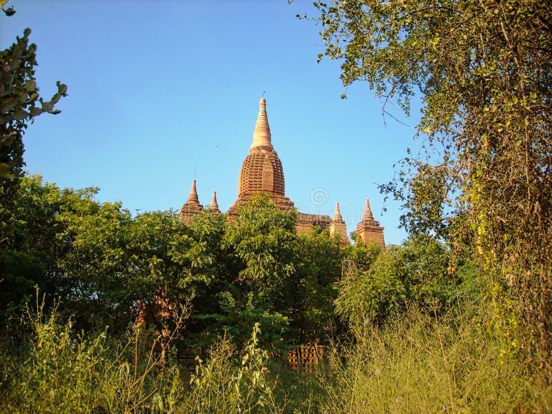 templo em Vietnam velho fora da cidade imagens de stock royalty free