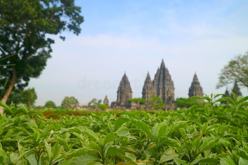Templo hindu de Prambanan, Bokoharjo, regência de Sleman, região especial de Yogyakarta, Indonésia foto de stock