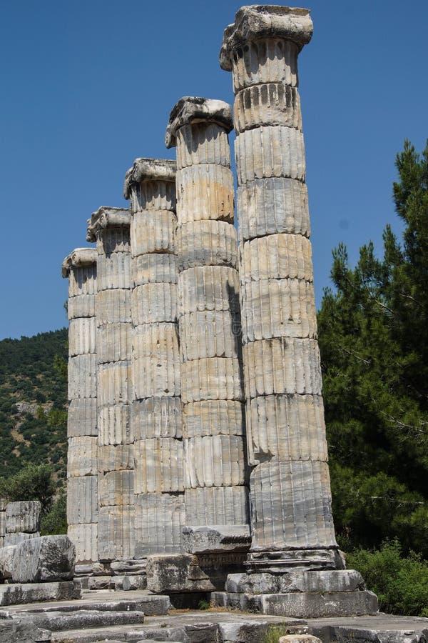 Templo iônico das colunas de Athena imagem de stock
