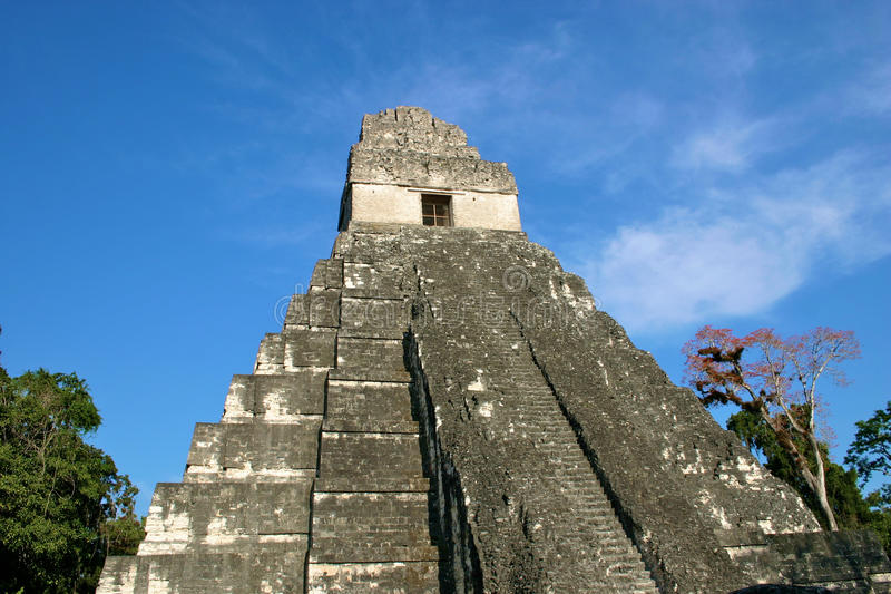 Templo maia Tikal, Guatemala imagem de stock royalty free