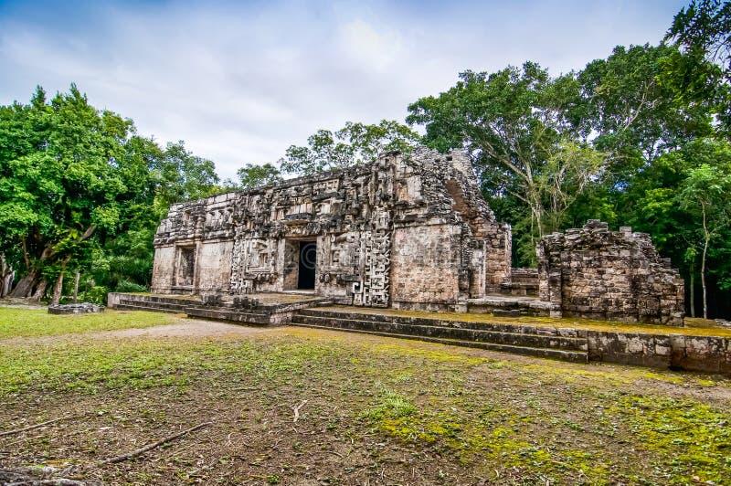 Templo maya en Chicanna, México, península del Yucatán fotos de archivo libres de regalías