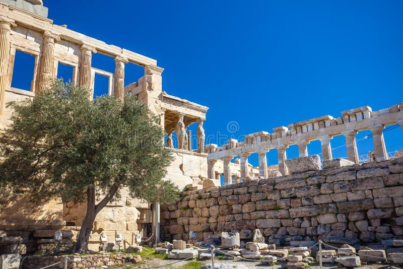 Templo na acrópole, Atenas de Erechtheion, Grécia fotos de stock