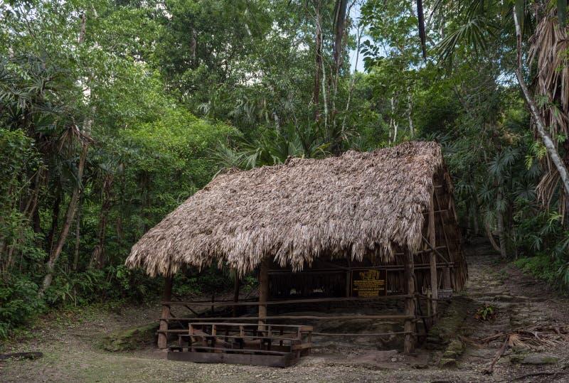 Templo no parque de Tikal Objeto Sightseeing na Guatemala com templos maias e ruínas do Ceremonial Tikal é uma citadela maia anti foto de stock