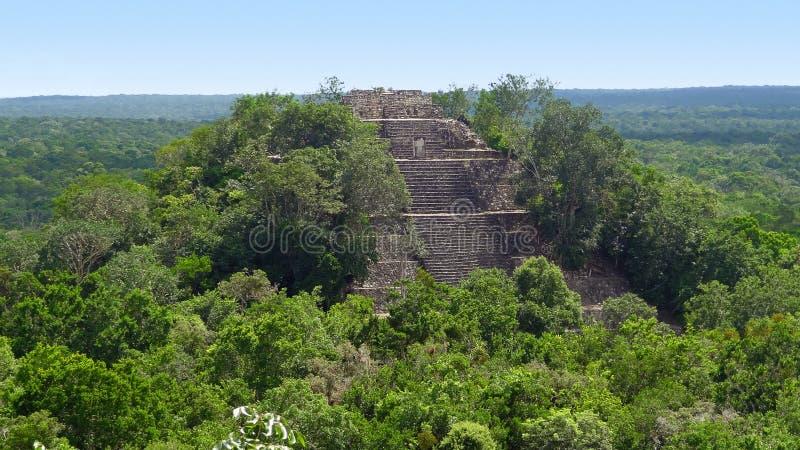 Templo overgrown en Calakmul fotos de archivo libres de regalías