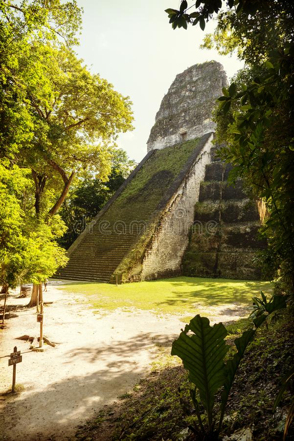 Templo 5 Tikal Guatemala fotografía de archivo libre de regalías