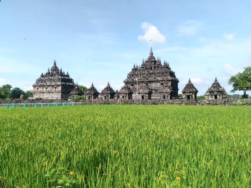 Templo Yogyakarta de Plaosan imagem de stock