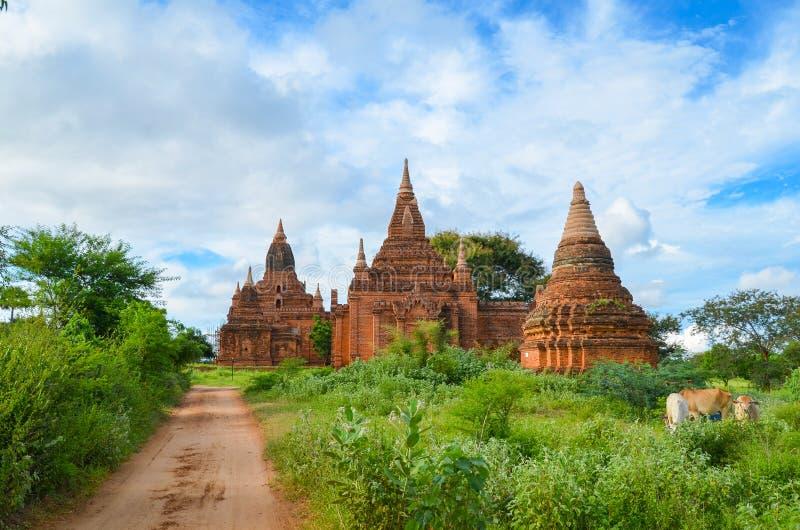 Templos antigos em Bagan, Myanmar fotos de stock royalty free
