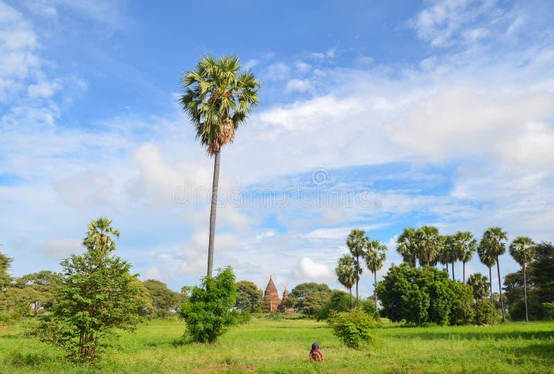 Templos antiguos en Bagan, Myanmar imagen de archivo