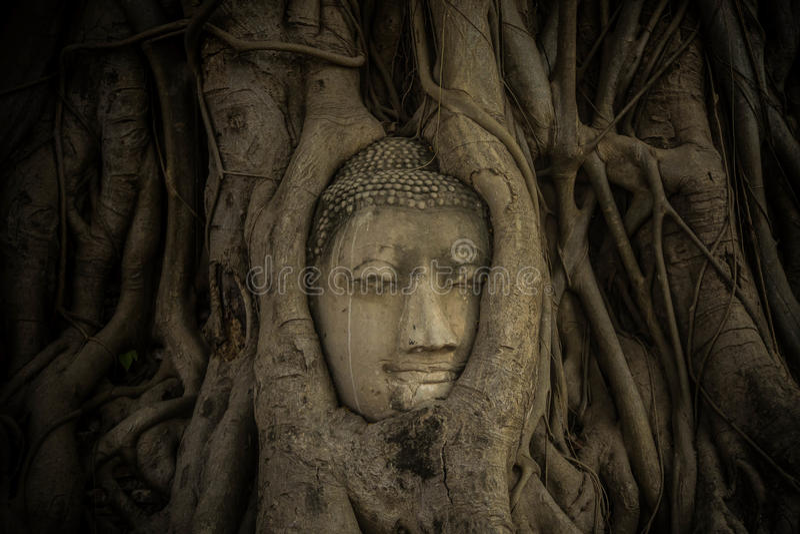 Templos de la historia fotografía de archivo libre de regalías