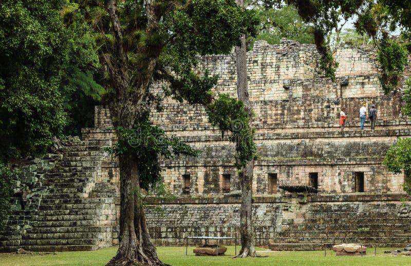 Templos maias abandonados, Copan, Honduras fotografia de stock