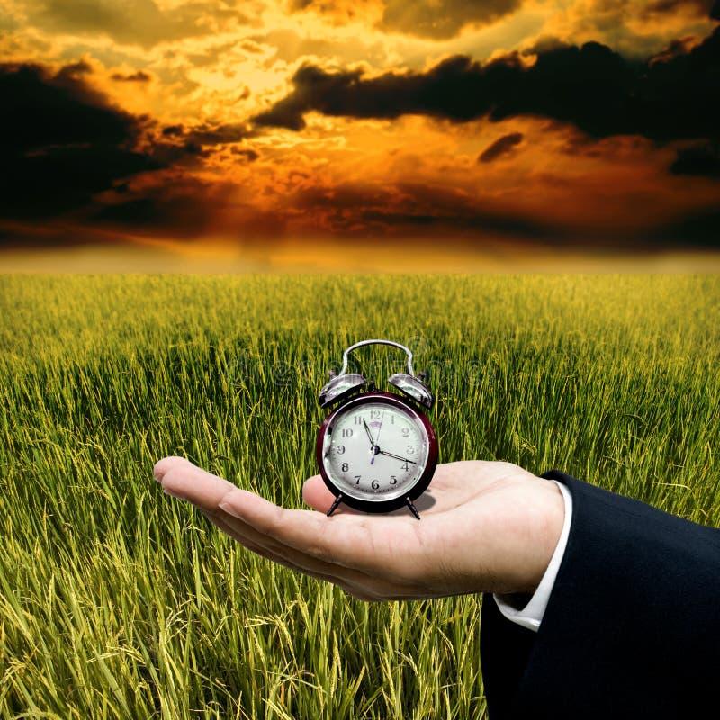 Tempo al lavoro con l'azienda agricola immagini stock libere da diritti