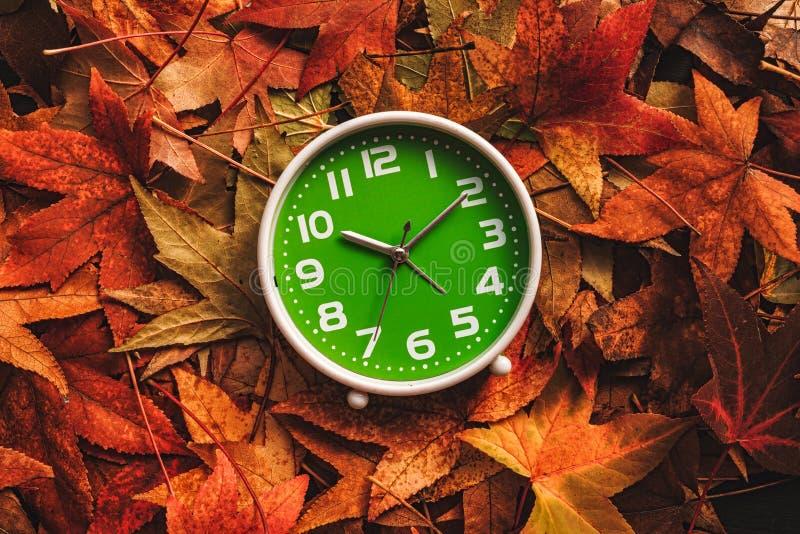 Tempo da estação do outono fotos de stock royalty free