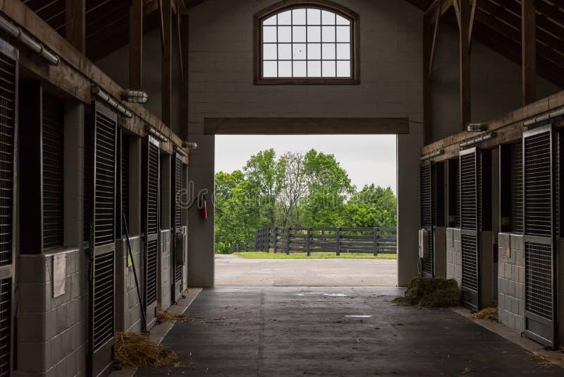 Tempo da limpeza no celeiro de cavalo fotografia de stock