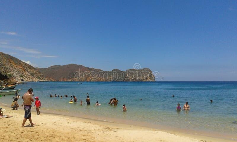 Tempo da praia! fotos de stock royalty free