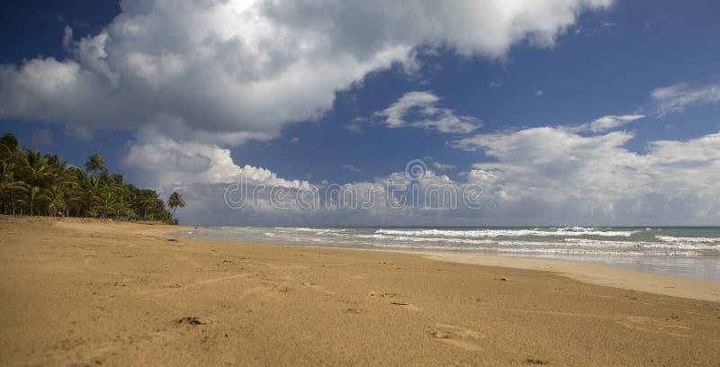 Tempo da praia imagens de stock royalty free