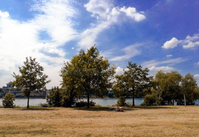 Tempo de gasto descamisado de um par dois homens junto no piquenique pelo Rhine River na cidade de Bona fotos de stock