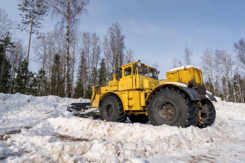 Tempo de inverno Snowplow que trabalha nas madeiras fotografia de stock royalty free