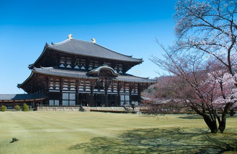Tempo del fiore di ciliegia nel Giappone immagini stock libere da diritti