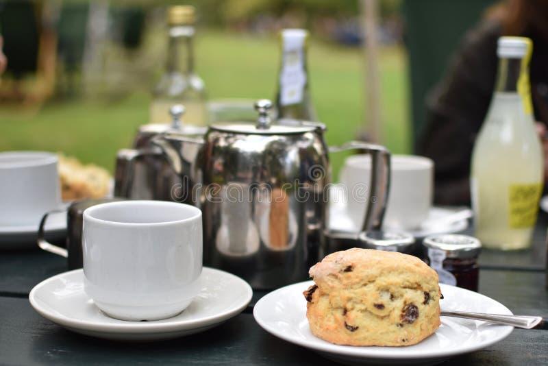 Tempo del tè nel frutteto fotografie stock