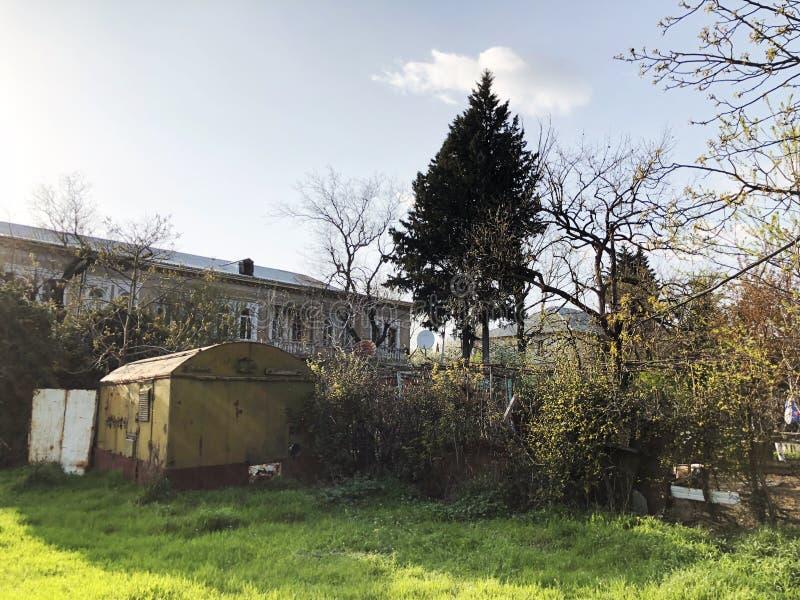 Tempo della primavera, cielo soleggiato, alberi di fioritura nel villaggio fotografia stock libera da diritti