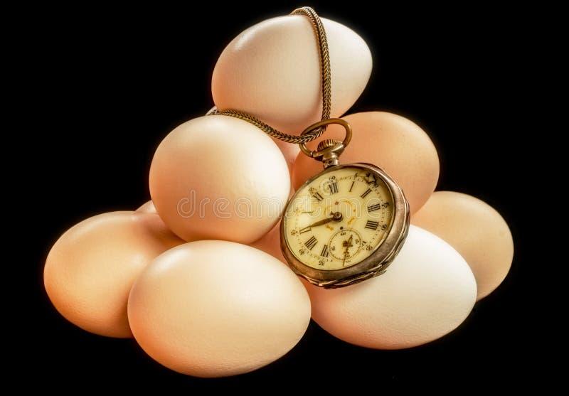 Tempo delle uova fotografia stock
