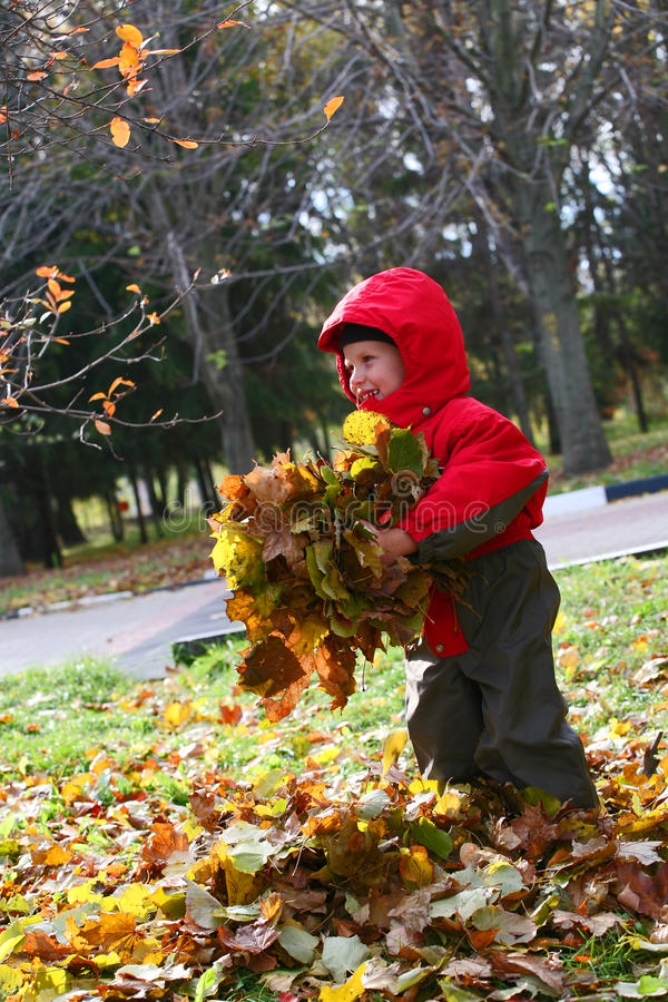Tempo di autunno fotografia stock