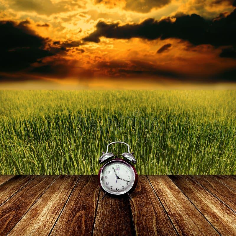 Tempo di riposare dal campo di agricoltura fotografie stock