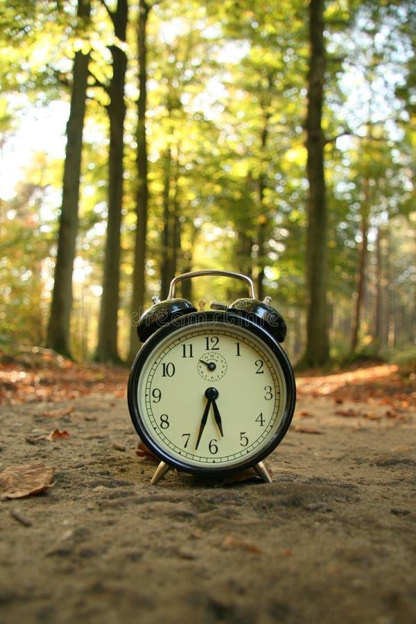 Tempo di spesa in natura immagine stock