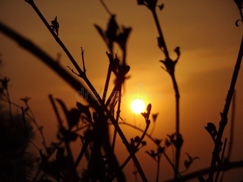 Tempo di tramonto immagini stock
