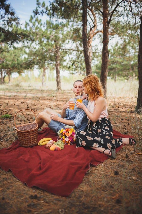 Tempo do piquenique Amor e ternura, datando, romance, conceito do estilo de vida Piquenique - par novo no prado da mola foto de stock