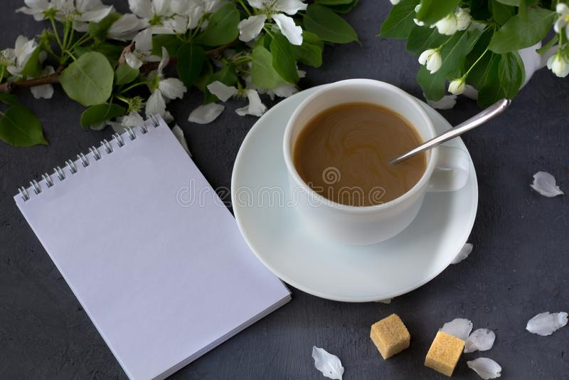 Tempo e felicità di rilassamento con la tazza di caffè fotografia stock libera da diritti