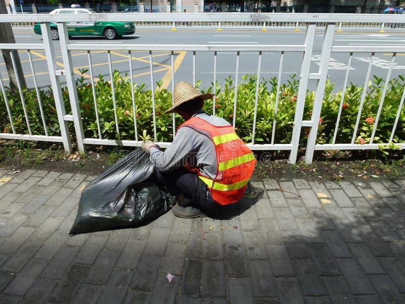 Tempo quente, trabalhadores do saneamento no cinto verde que puxa ervas daninhas foto de stock