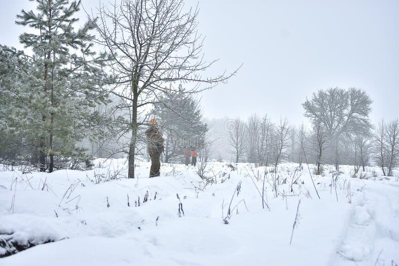Temporada de caza, caza del faisán Los cazadores se están colocando en el bosque que espera el pájaro fotos de archivo