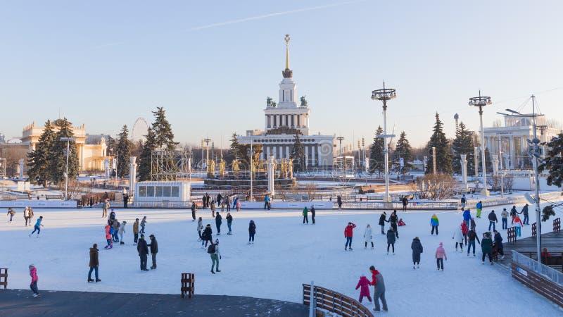 Temps beau dans l'ENEA de parc d'hiver photo libre de droits