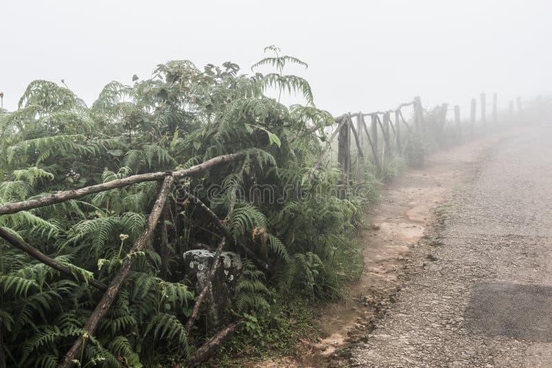 Temps brumeux dans Kochi photos stock