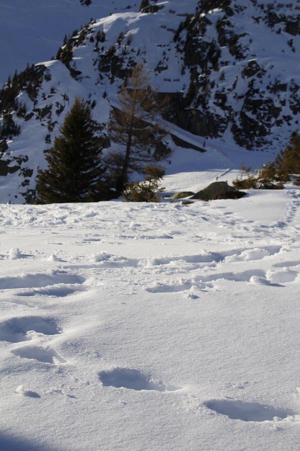 Temps clair en hiver image libre de droits