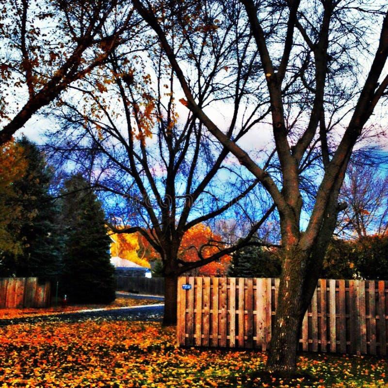 Temps d'automne image libre de droits