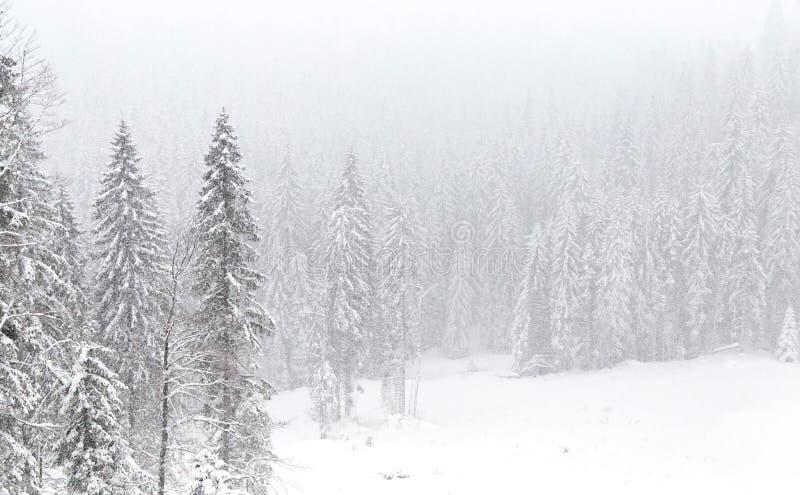 Temps de neige, montagne de Jahorina photos stock