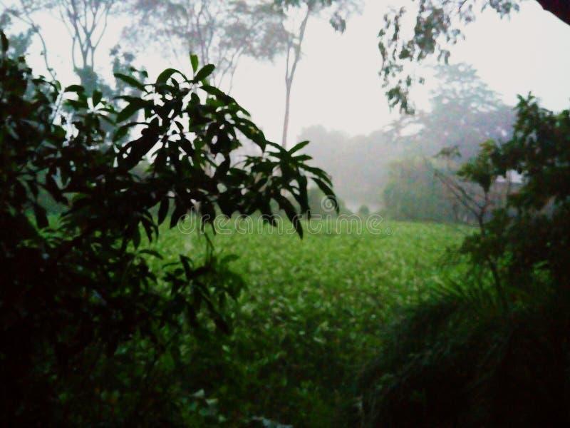 Temps de pluie images stock
