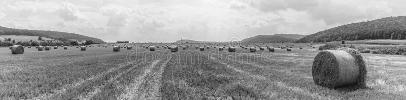 Temps de récolte - balles de paille dans un domaine - guerre biologique images libres de droits