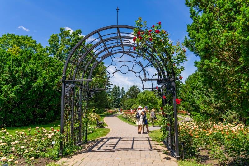 Temps de roses au jardin botanique de Montréal image stock