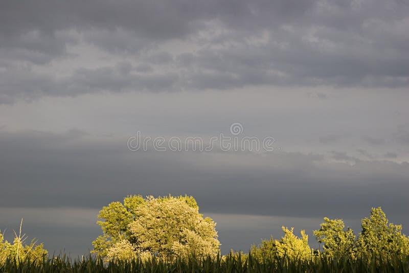 Temps de tempête images stock