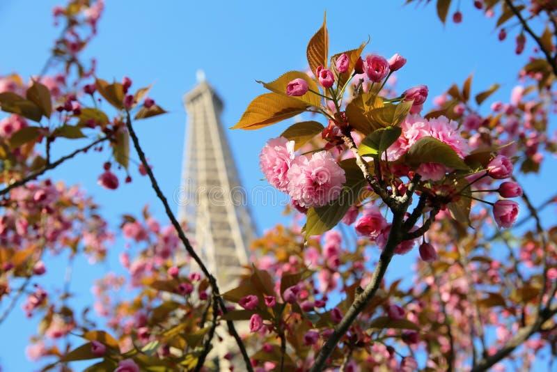 Temps de Tour Eiffel au printemps, Paris image stock