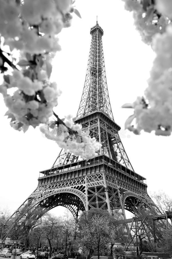 Temps de Tour Eiffel au printemps, Paris, France photo libre de droits