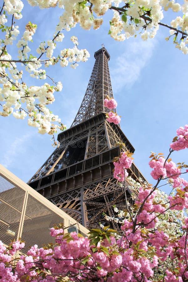 Temps de Tour Eiffel au printemps, Paris, France photo stock