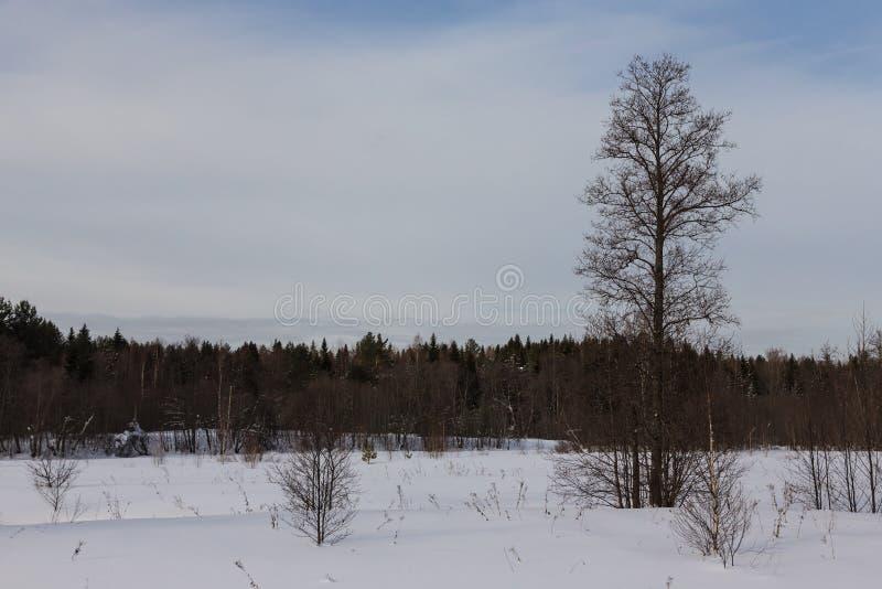 Temps sombre en hiver Paysage provincial russe photos libres de droits