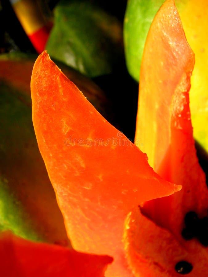 Tempting Papaya royalty free stock photography